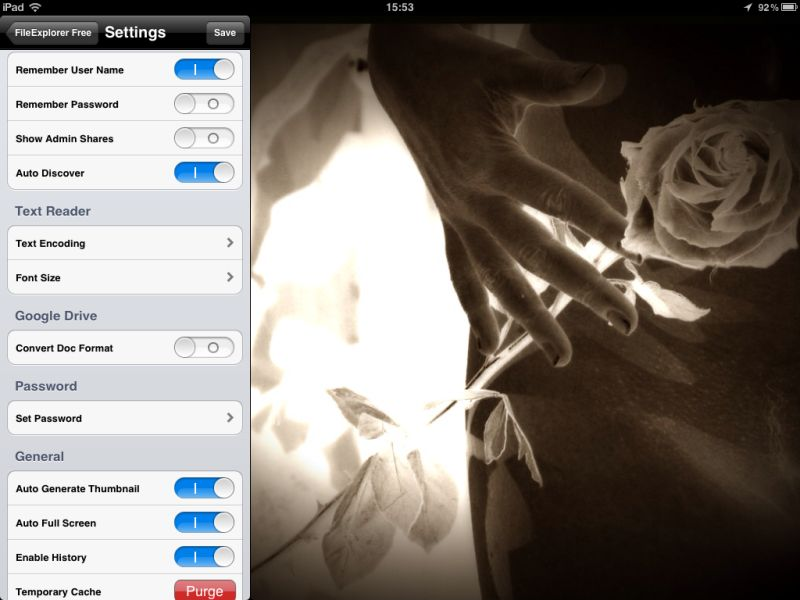FileExplorer (iPad)